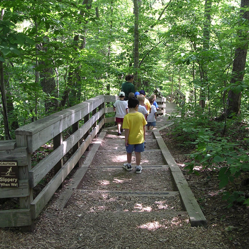 Photo of a group of kids walking on a greenway trail in Cary, NC